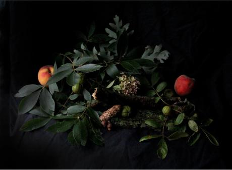 'Still Life with Remnants of Gloria' Joie Iacono, New York, 2011